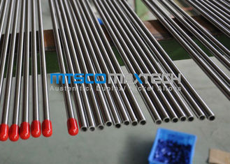 TP316L Seamless Hydraulic Tubing supplier