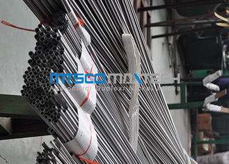 China S31803 Stainless Steel Seamless Tubing America Standard SS Seamless Tube supplier