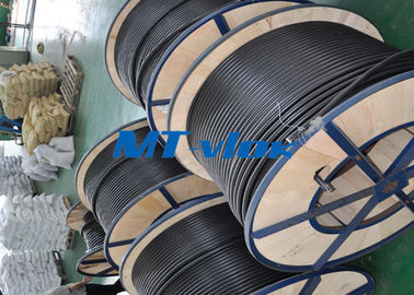 China ASTM A269 S30403 / S31603 Stainless Steel Welded Tube Coiled Stainless Tubing supplier