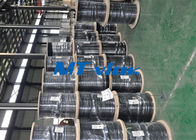 Welded Single / Multi Core Stainless Steel Coiled Tubing TP304L 316L Seamless supplier