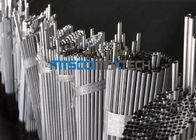 China TP316L / 1.4404 Cold Drawn small diameter stainless steel tubing for chromatography industry factory
