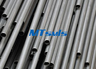 ASTM A249 TP317 S31700 ERW Straight Stainless Steel Welded Tube For Heat Exchanger supplier