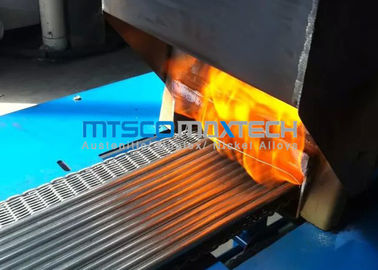 TP304 TP316 Stainless Steel Instrument Tubing with Mesh Belt Furnace Annealing